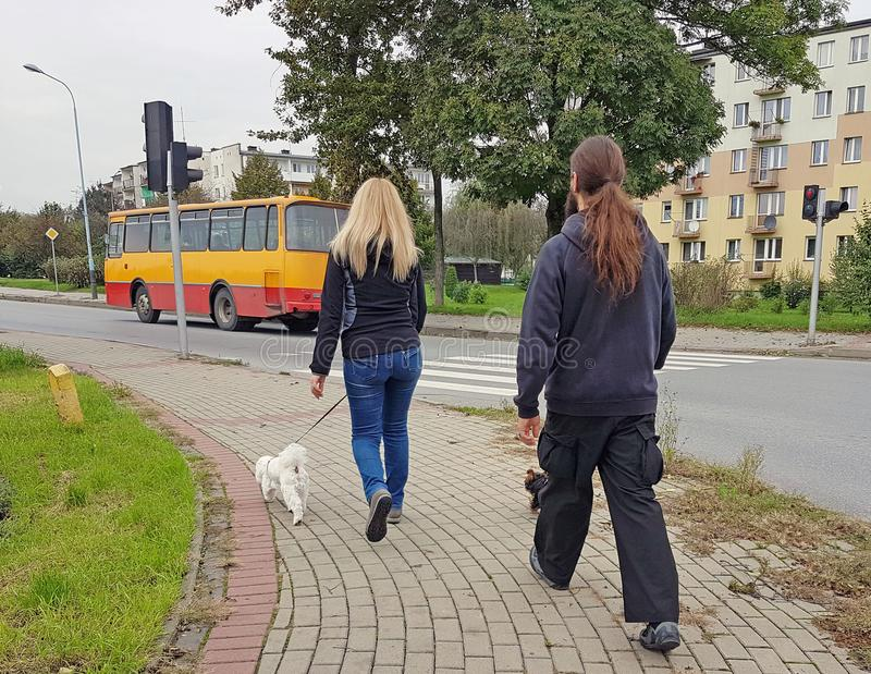 走沿有他们的小犬座的边路的一对年轻夫妇在一个住宅区 库存照片