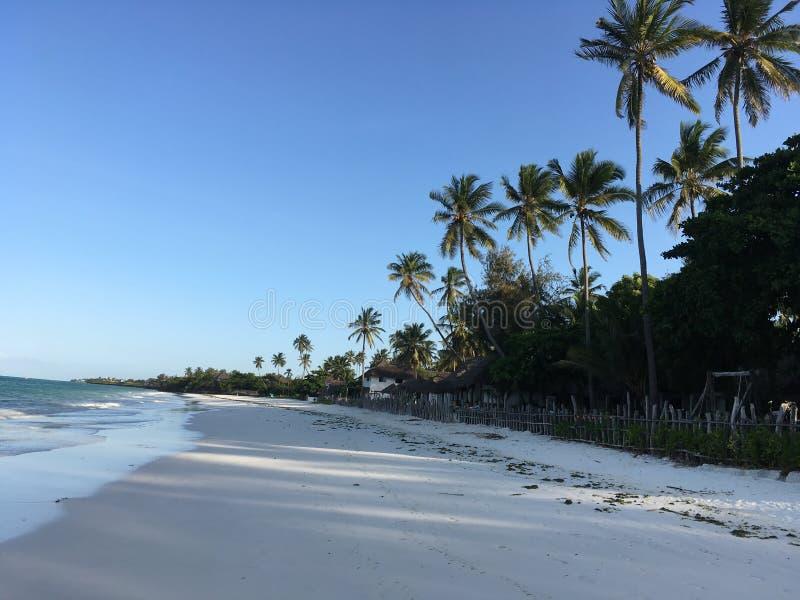 走沿Jambiani海滩的晴天 免版税库存图片