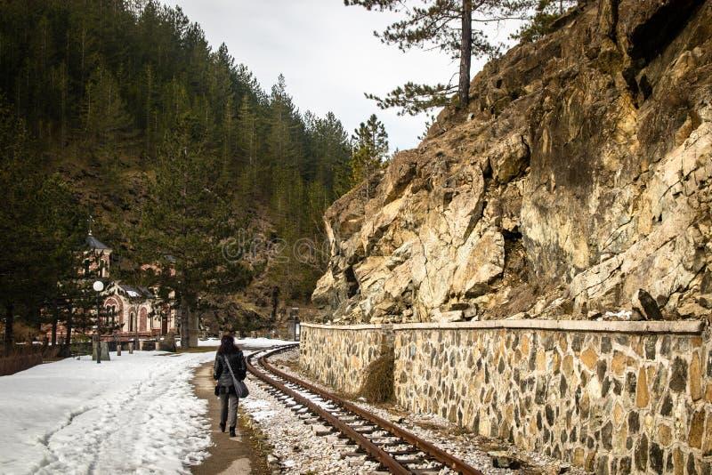 走由铁路的妇女通过日出的森林 库存图片