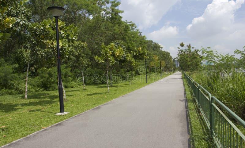 走的和循环的道路 库存照片