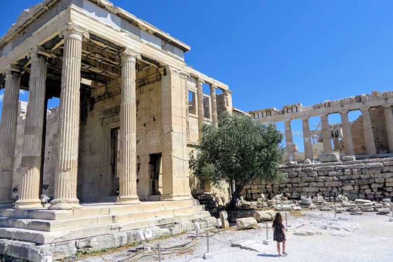 走的年轻女人由她自己敬佩雅典娜光彩的古希腊古庙在上城上面的,在雅典 免版税库存图片