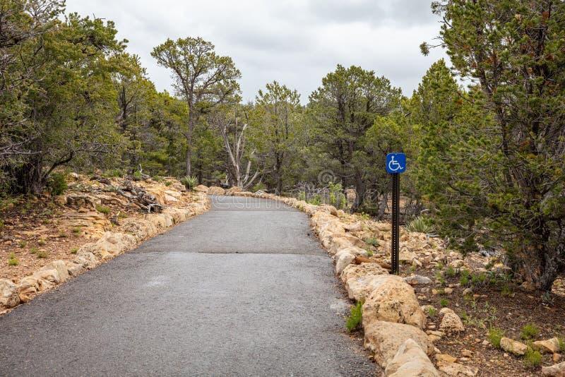 走的足迹和轮椅通入标志、松树和多云天空背景 r 库存图片