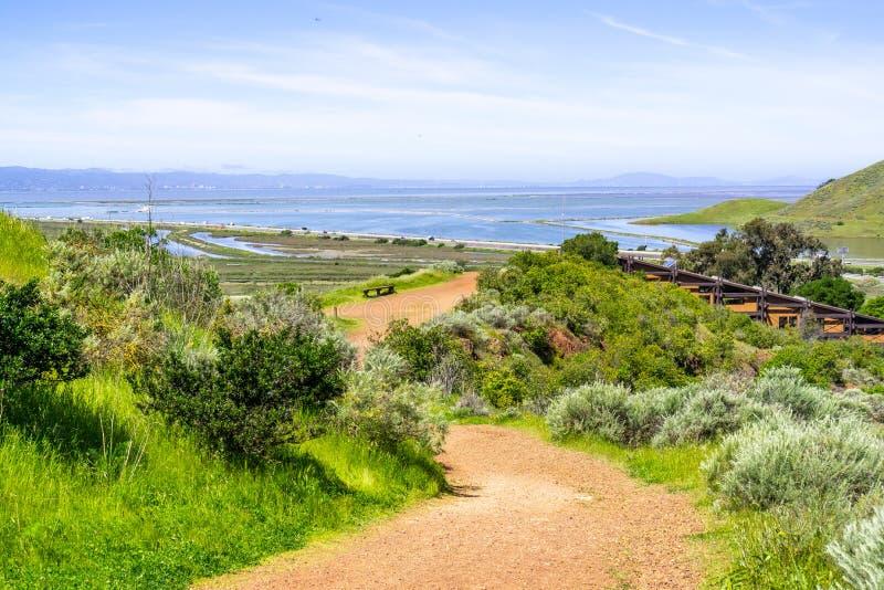 走的足迹在唐爱德华兹野生生物保护区、旧金山湾和敦巴顿橡树园桥梁可看见在背景,佛瑞蒙中, 免版税库存图片