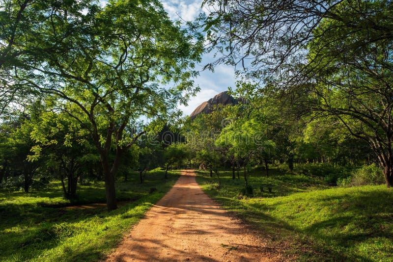 走的足迹在Mihintale,斯里兰卡 免版税图库摄影