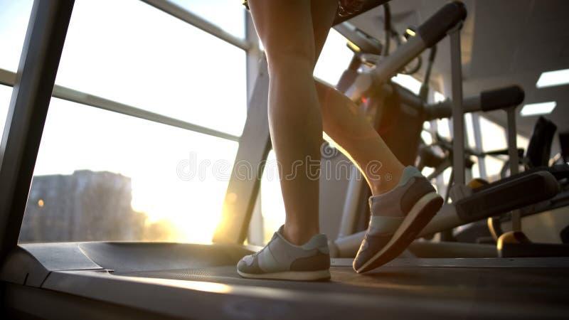 走踏车机器,心脏锻炼,活跃生活方式的女运动员腿 免版税库存照片