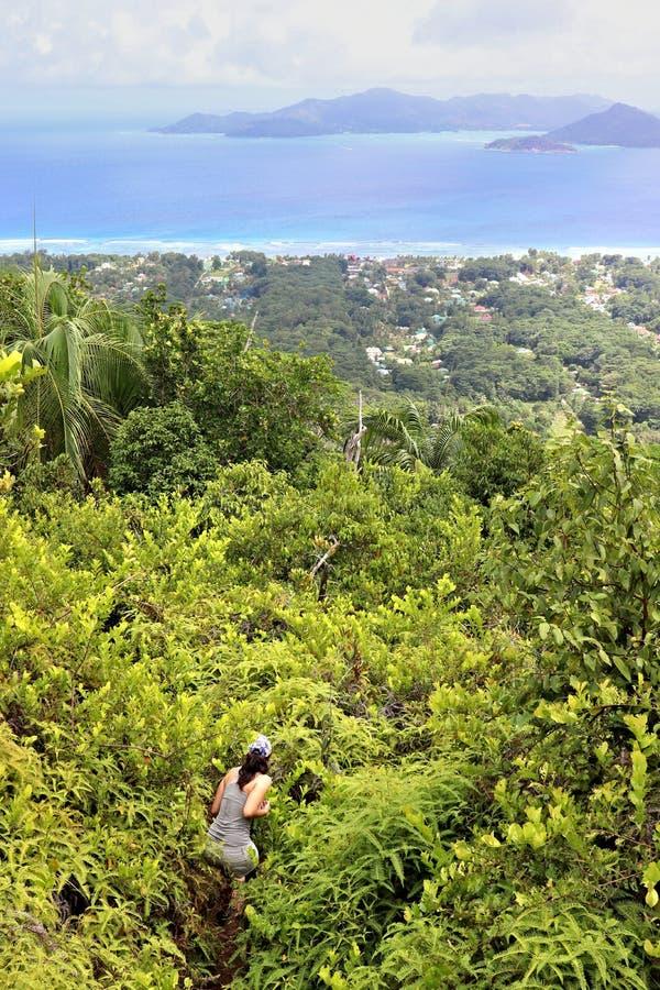 走通过灌木的徒步旅行者在塞舌尔 库存图片