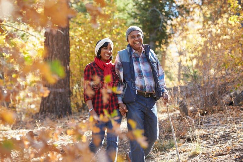 走通过秋天森林地的资深非裔美国人的夫妇 免版税库存照片