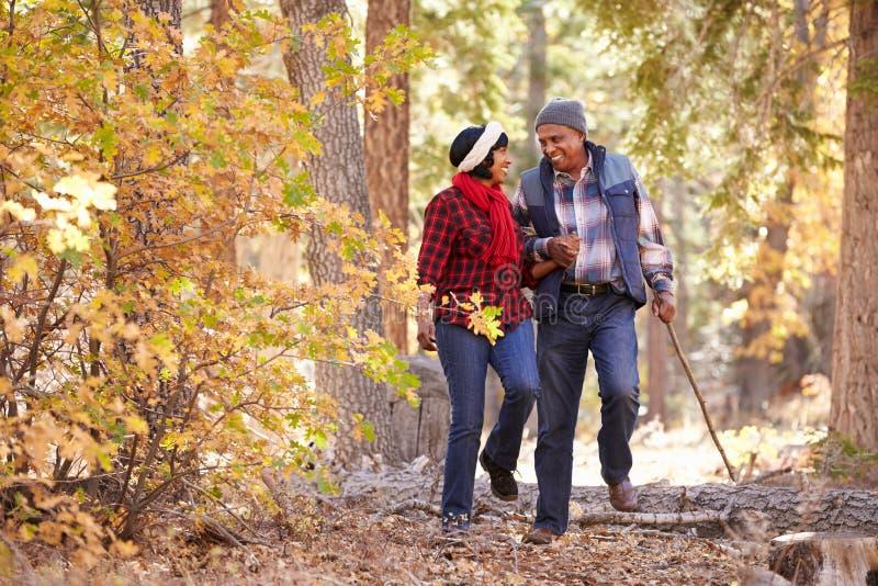 走通过秋天森林地的资深非裔美国人的夫妇 免版税库存图片