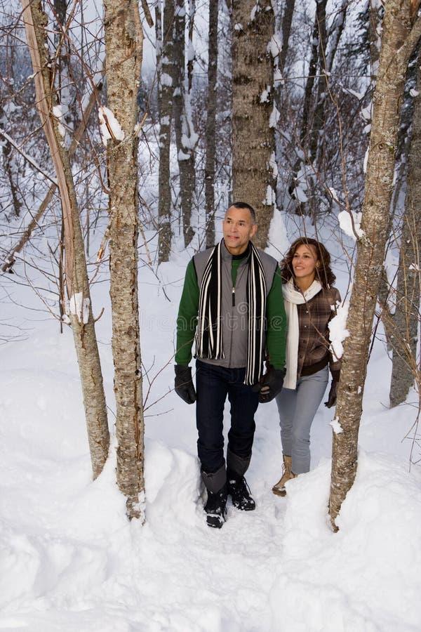 Download 走通过雪的成熟夫妇 库存照片. 图片 包括有 加拿大, 其中每一, 藏品, 成熟, 查找, 冷静, 种族 - 62534740