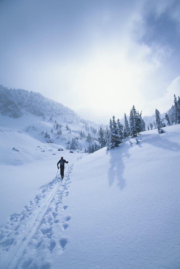 走通过雪的滑雪者 免版税库存图片