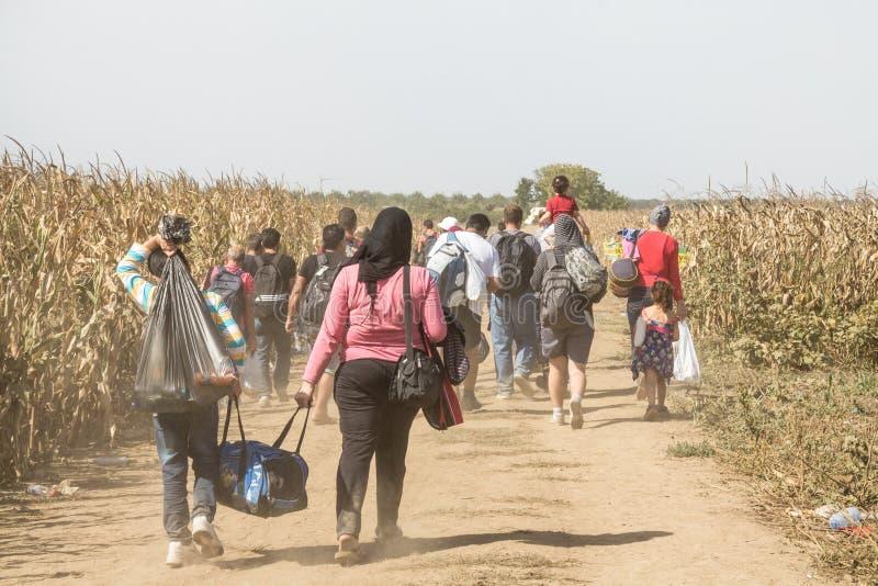 走通过领域的难民在克罗地亚塞尔维亚边界附近,在巴尔干路线的Sid之间Tovarnik城市 免版税库存图片