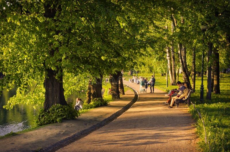 走通过Tavrichesky庭院绿色胡同  免版税图库摄影