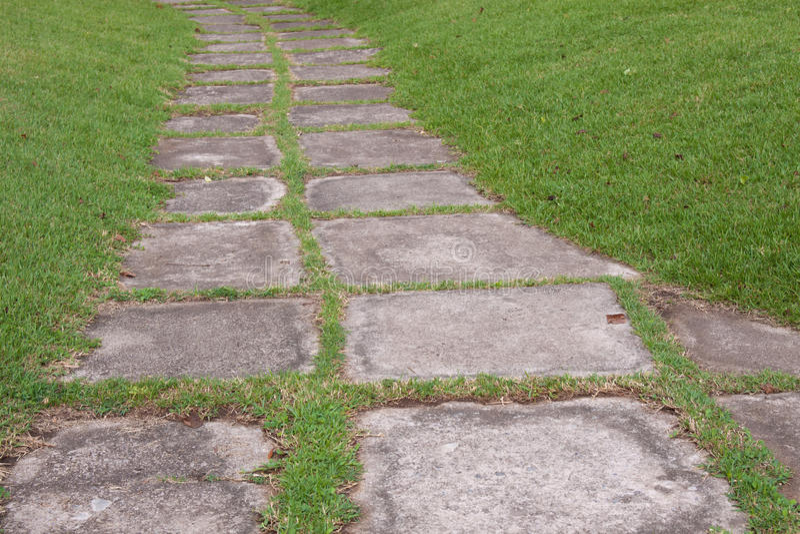 走道在绿草的水泥板材 库存图片