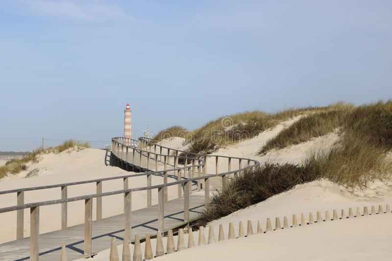 走道导致海滩的-葡萄牙 库存照片