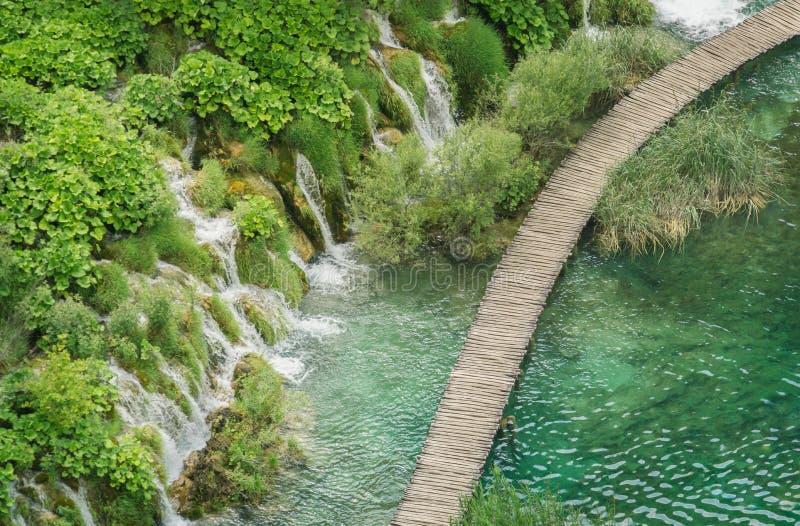 走道鸟瞰图在普利特维采湖群国家公园 免版税库存图片