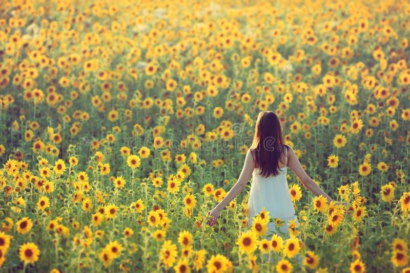 走读女生晴朗夏天的向日葵 免版税库存图片