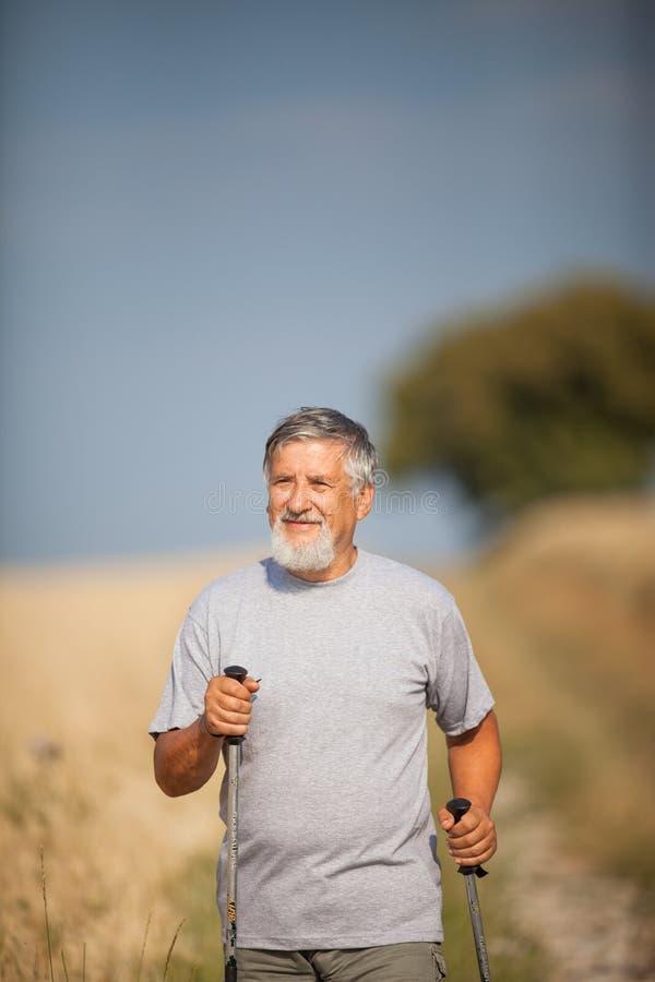 走活跃英俊的老人的北欧人户外 免版税图库摄影