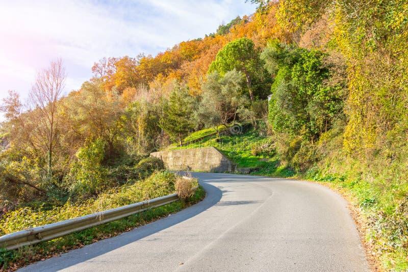 起动在山的一条狭窄的柏油路 库存图片