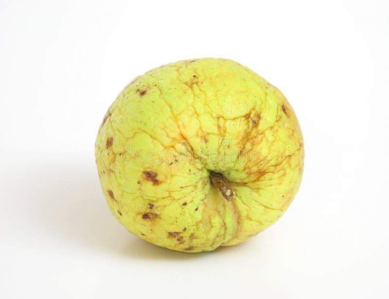 起皱纹的苹果 库存照片