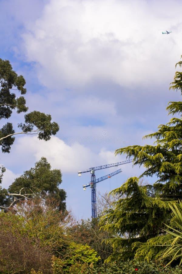 起重机和建筑背景的森林  自然和文明 塔吊的看法通过公园和 库存图片