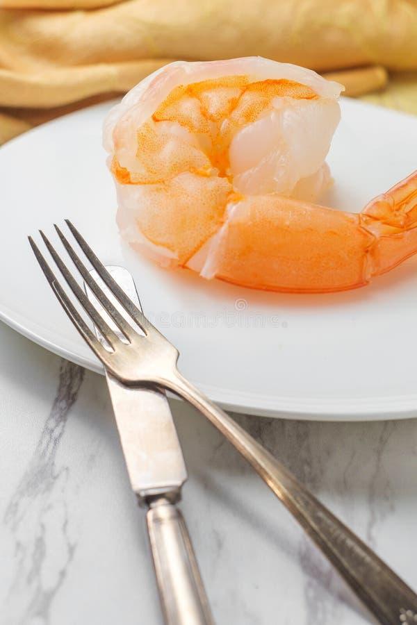 超大虾逆喻 免版税库存照片