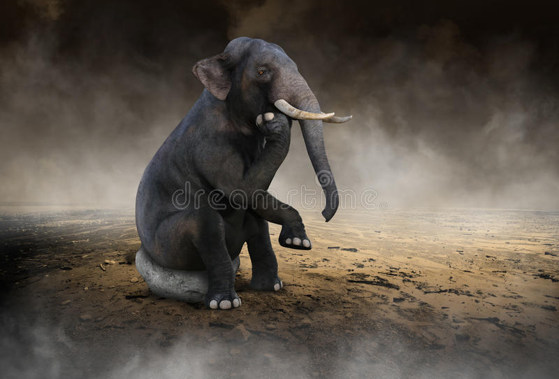 超现实的大象认为,想法,创新 库存照片