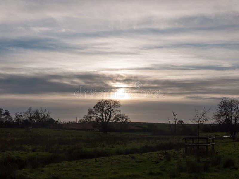 超现实的天空云彩太阳集合太阳领域草甸树放牧土地 库存图片