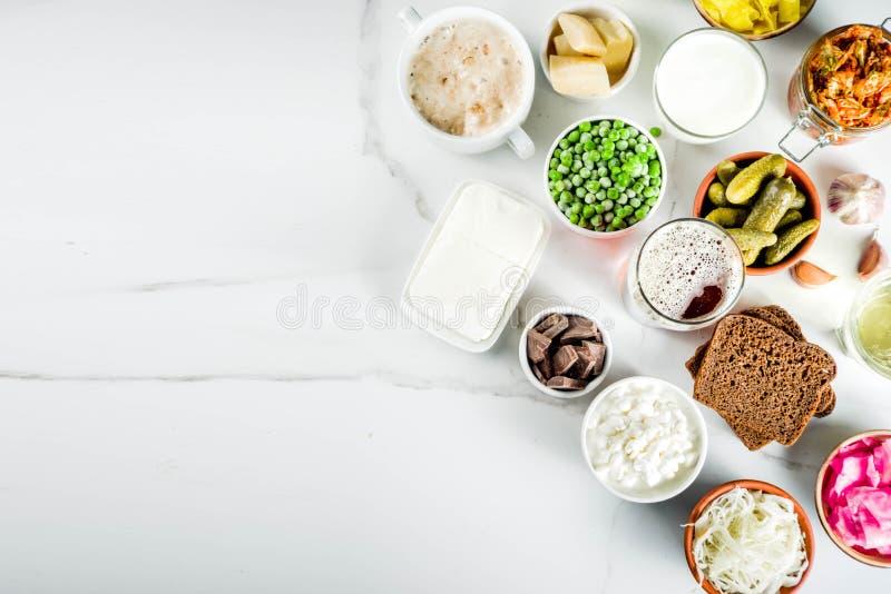 超级健康前生命期的被发酵的食物来源 免版税库存图片