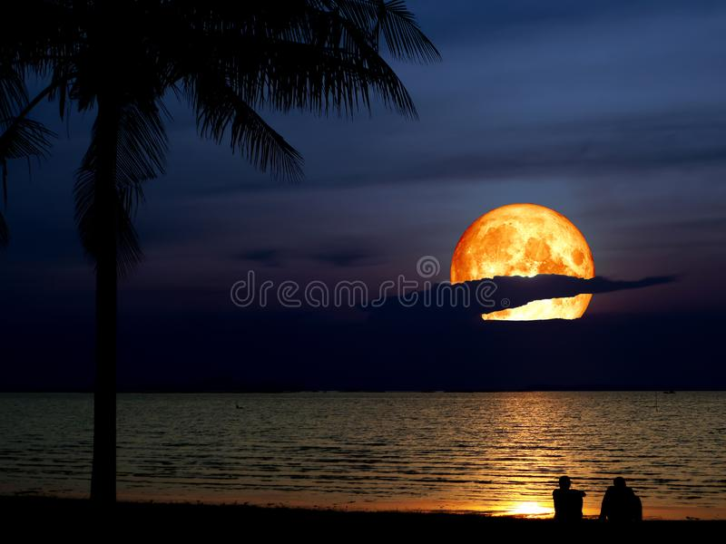 超级名门出身月亮剪影椰子两人看月亮 免版税库存照片