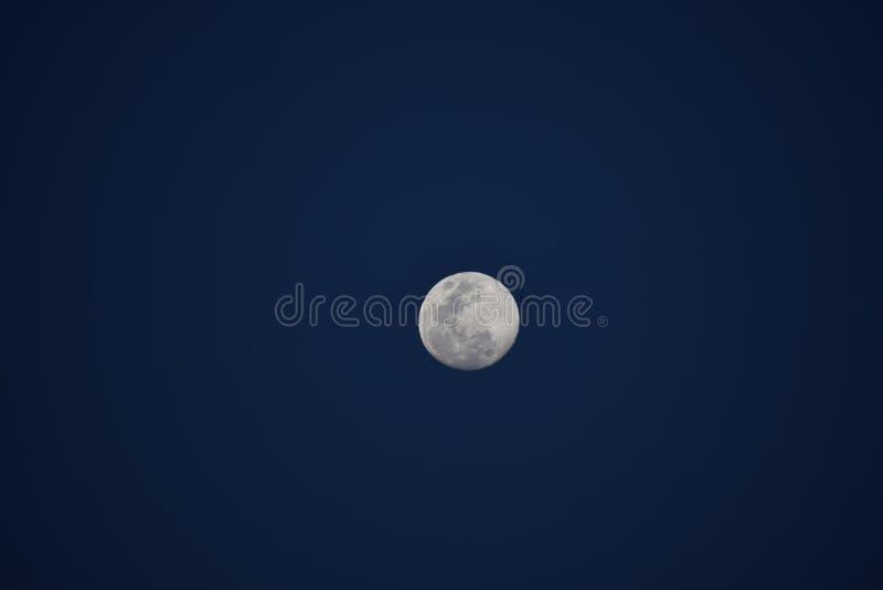 超级月亮 图库摄影