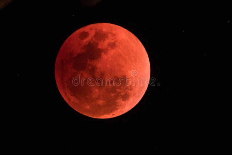 超级血液月亮在夜2018年1月31日, 免版税库存图片