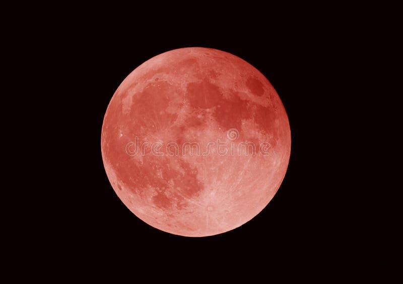 超级血液月亮,月蚀,洛杉矶,加利福尼亚 免版税库存照片