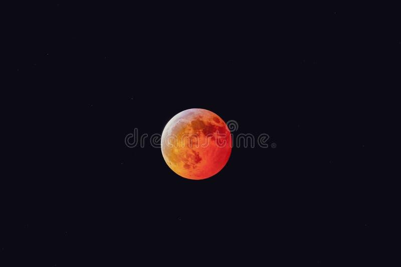 超级血液狼月亮2019年1月21日 库存图片