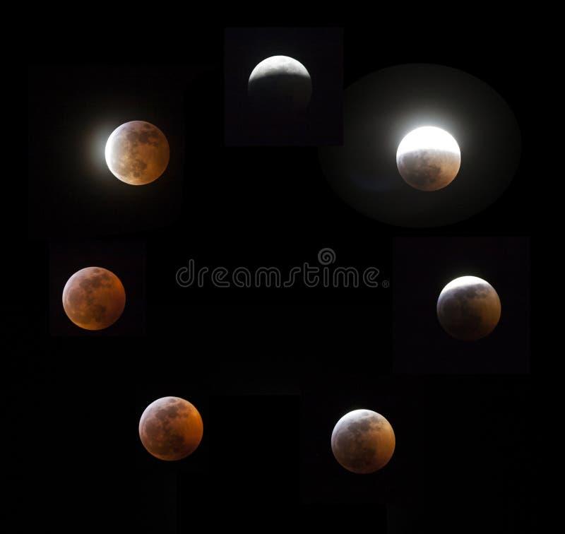 超级血液狼月亮 免版税库存图片