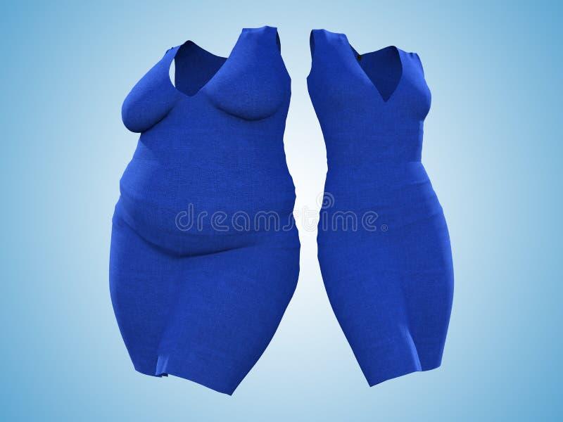 超重肥胖女性礼服成套装备对亭亭玉立的适合健康身体 库存例证
