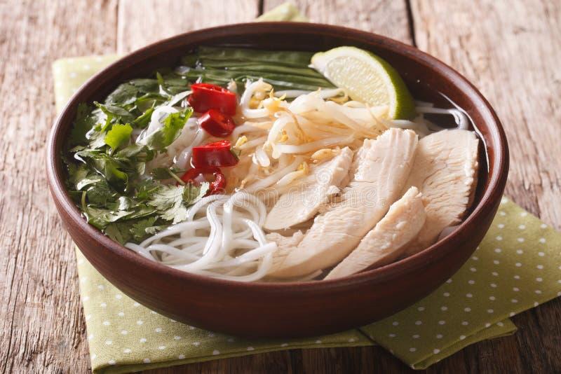 越南烹调:汤与鸡、米线和f的Pho Ga 库存图片