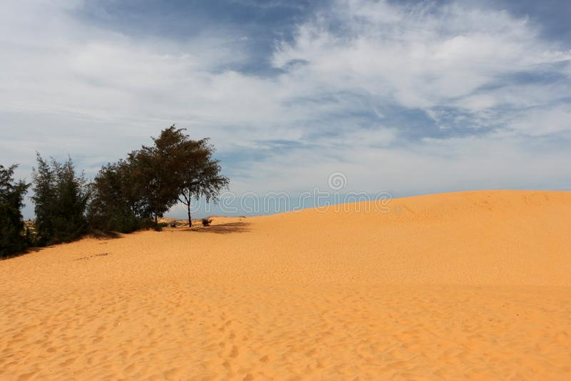 越南的红色沙子 免版税库存图片