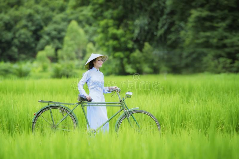 越南 免版税库存照片