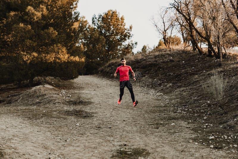 越野足迹奔跑的体育连续人 适合的男性赛跑者锻炼训练和跳跃户外在美好的山自然 库存图片