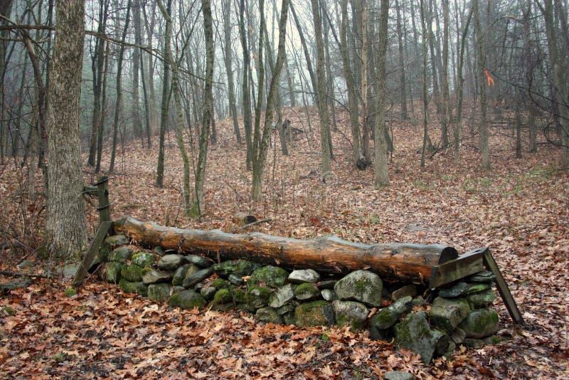越野跳跃的篱芭 图库摄影