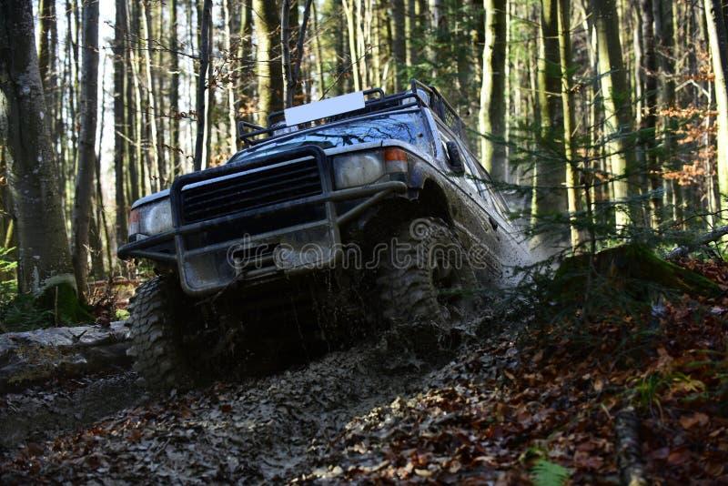 越野车或SUV克服障碍 在秋天自然背景的越野种族 赛跑在秋天森林里的马达 免版税图库摄影