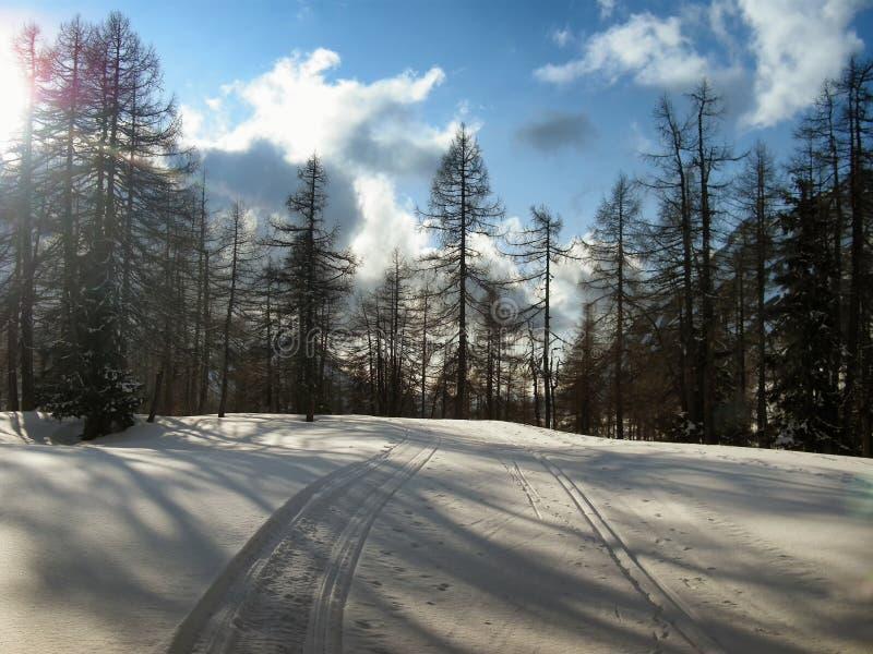 越野轨道在山森林里在冬天白天 库存图片
