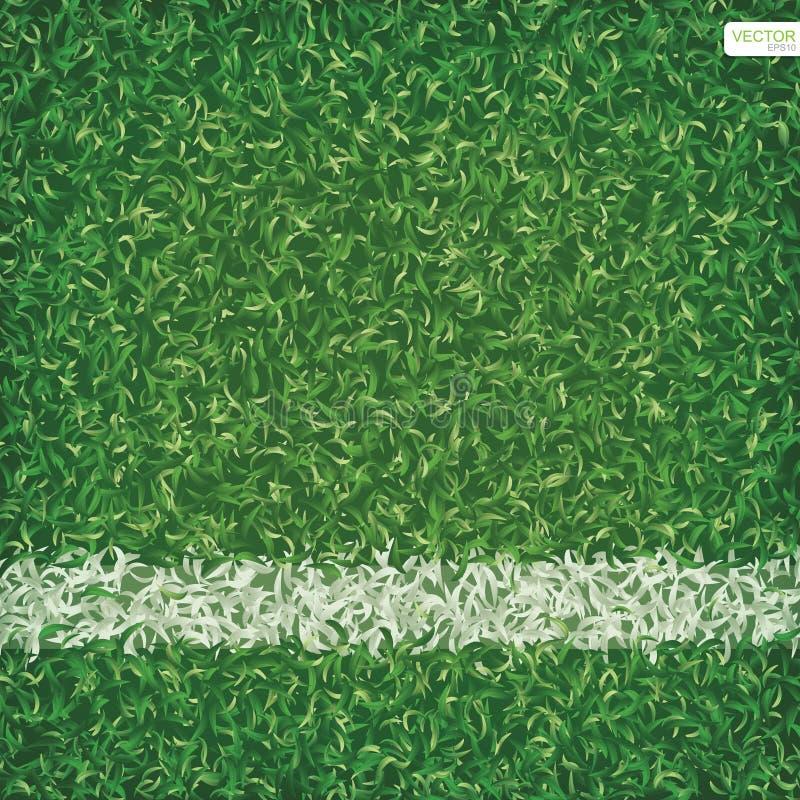 足球与空白线路的橄榄球场背景绿草  库存例证