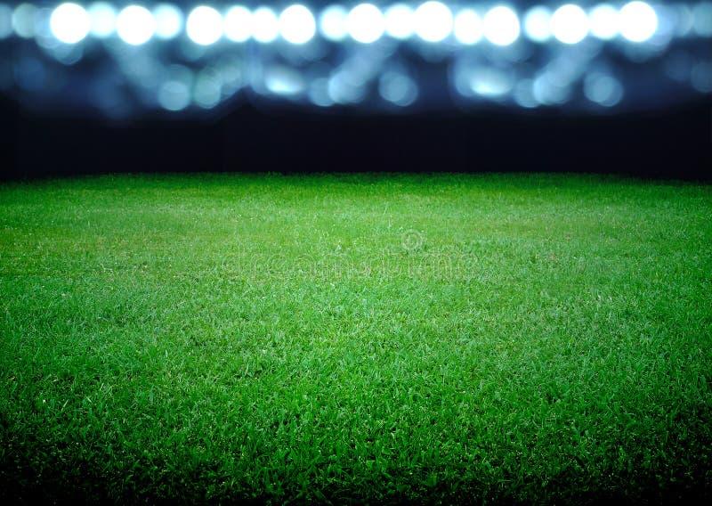 足球场 库存照片