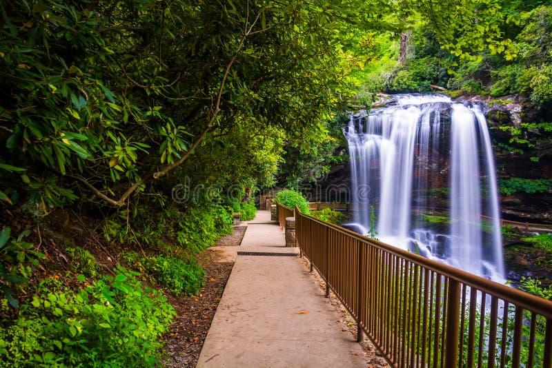 足迹和干瀑布,在Nantahala国家森林里,北部Carolin 免版税库存图片