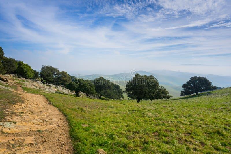 足迹在如毛刷高峰地方公园,东部旧金山湾,利弗摩尔,加利福尼亚 库存照片