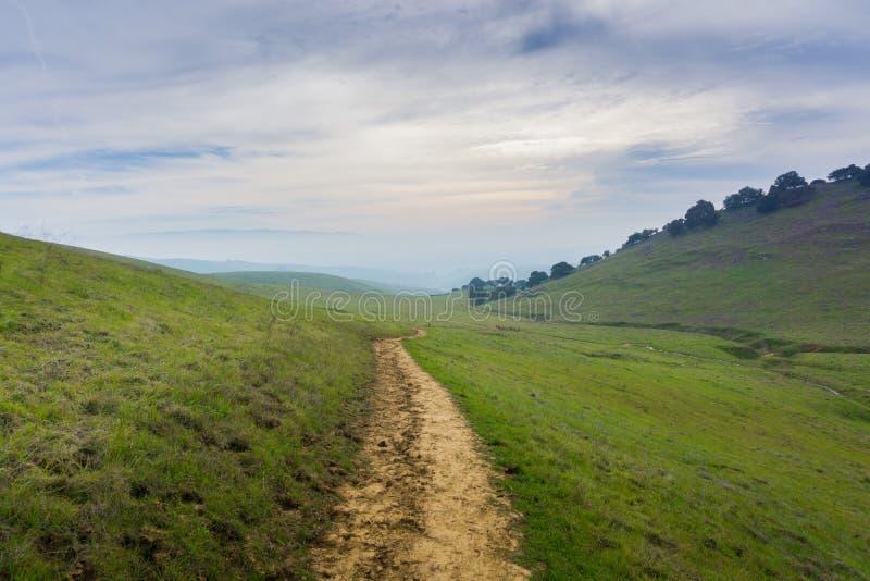 足迹在如毛刷高峰地方公园,东部旧金山湾,利弗摩尔,加利福尼亚 免版税库存图片