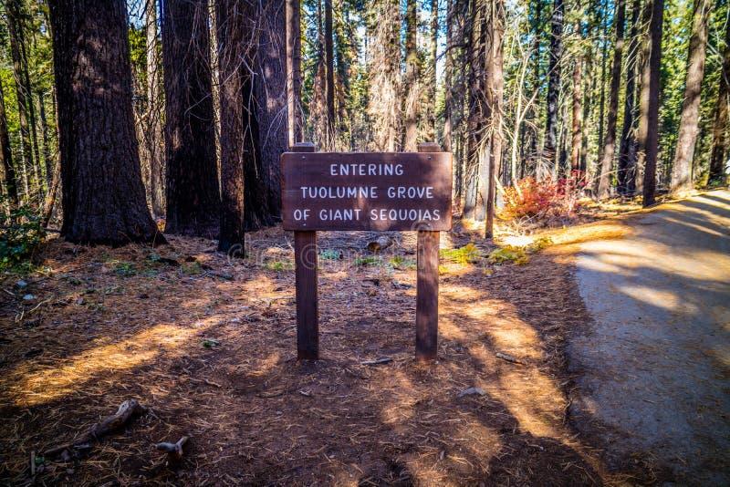 足迹的在优胜美地国家公园,泰奥加路一个描述委员会 免版税图库摄影