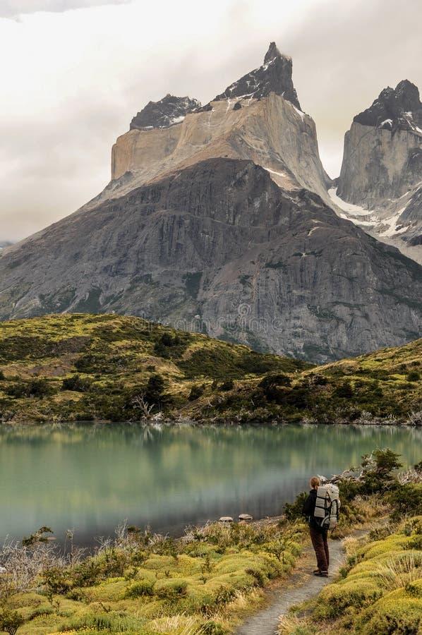 足迹的少妇远足者在托里斯del潘恩国家公园,智利 观看山风景的老牛在湖 免版税库存图片