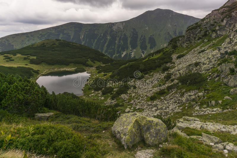 从足迹西部Tatra山斯洛伐克的看法 免版税库存图片
